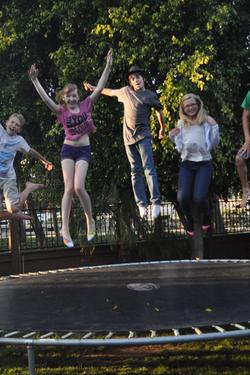 Hive 5ml trampoline